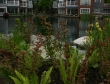 condos-on-false-creek-by-fishermans-warf-by-granville-island-1